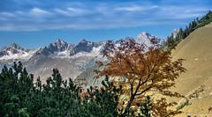 am Weg zum Kogelsee (michael.tschiderer) Tags: michael tschiderer weisenbach am lech reutte tirol ausserfern nature kogelsee lechtaler alpen autum sun heaven foto nikon