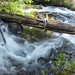 National Creek just above National Creek Falls