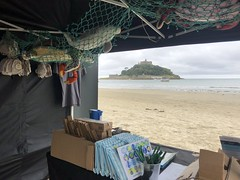 Cornwall Project 2019