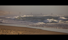French Atlantic coast (mexou) Tags: biscarrosse biscarrosseplage waves ocean summer 2019 sand mexou canon 5div sigma
