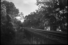 old raiload bridge, late light, Emma Road, Asheville, NC, JB Ensign box camera, Rollei RXP 400, HC-110 developer, 10.14.19 (steve aimone) Tags: railroad railroadbridge bridge emmaroad asheville northcarolina jbensignhoughtonbutcherboxcamera jbensign houghtonbutcher rolleirxp400 hc110developer mediumformat monochrome monochromatic blackandwhite 120 120film film