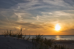 Evening walk (Oct 15, 2019). (ms.gulbis) Tags: liepaja balticsea evening sea sunset clouds dunes sky