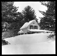 4x5-080m-58 (ndpa / s. lundeen, archivist) Tags: nick dewolf nickdewolf bw blackwhite photographbynickdewolf 1958 1950s film monochrome blackandwhite winter snow snowcovered landscape trees building house home unidentified 6x6 mediumformat yard newengland
