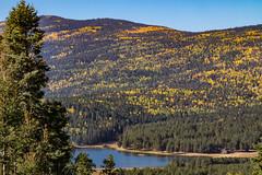 Monte Verde Lake (webersaustin) Tags: