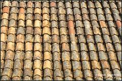 old roof tiles Croatia (graeme cameron photography) Tags: dubrovnik croatia roof tiles