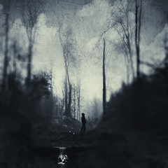 in the shadows (Dyrk.Wyst) Tags: monochrome conceptual surreal dark valley blur textured male lookingup stuck atmosphere chilly creek deadtrees fog forest hiking landscape misty mood nature outdoors silhouettes trees wet woods