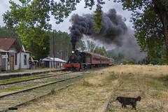 Locomotora 620 | Estación Pishuinco (Felipe Radrigán) Tags: tren ferrocarril train railroad railway locomotora locomotive 620 valdivia losrios loslagos estacion vapor steam efe valdiviano chile pishuinco