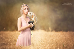 (Cristina Laugero) Tags: blonde grano owl magin regina queen wheat gold oro princess princesse fairy