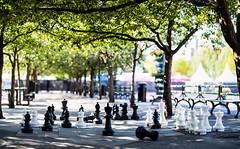Kungsträdgården, Stockholm, August 2, 2019 (Ulf Bodin) Tags: kungsträdgården sverige game sweden schack canonrf85mmf12lusm chess stockholm summer canoneosr outdoor urbanlife stockholmslän