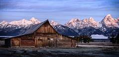 The T.A. Moulton barn in the Grand Teton National Park on a cold last day of September 2109. There were a couple of snows on the Tetons before this morning and I think it really added to this morning photo. (Don 1954) Tags: barns tetonsday5 autumncolors leveltravel landscape landscapephotography missouriphotographers nikon750 nikond750 usnationalparks usnationalparksandplaces grandtetons tamoultonbarn mountains