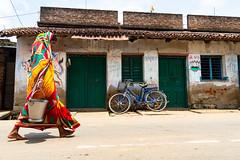 Lion inside her (Karunyaraj) Tags: charida westbengal cycle lion women saree walk hinduwomen flag indianflag sun shadow nikon24120 d610 cwc cwc742