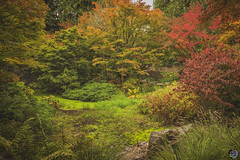 Autumn colors so tranquil 2019 (TheArtOfPhotographyByLouisRuth) Tags: autumn