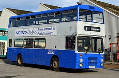 153 E153BTO (PD3.) Tags: iow volvo b10m derby e153bto e153 bto 153 isle wight hants hampshire england uk great britain newport godshill quay harbour bus buses museum preserved vintage running day rally autumn sunday 12 13 october 2019 southern