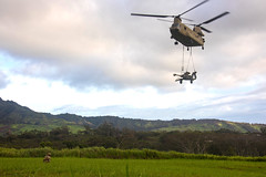 """An Army pilot guides in a CH-47 Chinook to the landing zone (#PACOM) Tags: 25thinfantrydivision tropiclightning 25thid 25id 2ndibct 2ndinfantrybrigade 2ndinfantrybrigadecombatteam 2dinfbrigade 2ndinfbrigade 2ndinfbde 2ibct warriors pacific usarpac indopacom indopacific hawaii schofield schofieldbarracks readiness uh60 ch47 chinook helicopter slingload airassault twogunraid artillery m777howitzer howitzer fieldartillery 211fieldartillery 211fa 25thcab combataviation 25thcombataviationbrigade dillinghamairfield usindopacificcommand """"usindopacomunited states"""