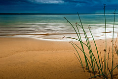 Softly Shore (somewheredowntheroadphoto) Tags: beach light shadow shadows water reeds ocean lake sea storm stormy