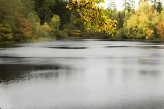 stopping time (outdoorstudio) Tags: ©jetteoutdoorstudiodk ©jettewfrederiksen skov forest ©outdoorstudiodk svampetur fall efterår lake sø autumn