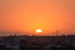 Amanecer en Valencia 33 (dorieo21) Tags: amanecer aurore aurora alba sunrise sol soleil sole sun sunlight sonne sonnenuntergang himmel cielo ciel sky
