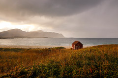 A red cabin at Ramberg Beach facing the storm during the golden hour (marcel.weber89) Tags: autumn background beach beautiful blue building cabin clouds cloudy coastline colorful country countryside field goldenhour grass home horizon house hut landscape lofoten meadow nature northernnorway norway norwegian old outdoor rainy ramberg rambergbeach red rural scenery scenic sea seascape shore sky sun sunset view water wooden