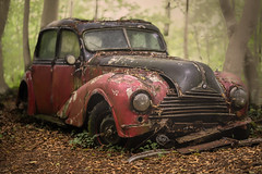 Used car for sale (The Papa'razzi of dogs) Tags: car trees bmw autumn automobile green red old oldtimer used outdated
