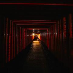 Kyoto, Fushimi Inari Shrine #kyoto #japan #fushimiinari #shrine #torii #toriigate (Murat Guneri) Tags: ifttt instagram kyoto fushimi inari shrine japan fushimiinari torii toriigate
