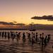 Dry Tortugas Coaling Docks Sunrise