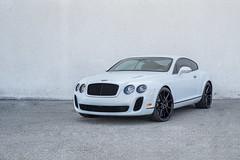 "Bentley GT Supersport on 22"" Vossen VFS-1 Wheels Savini SV-F2 (vibemotorsports) Tags: vibemotorsports vossen vfs1 white glossblack bentley gt supersport"