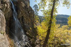 Rays in the Falls (kevin-palmer) Tags: blackhillsnationalforest fall autumn october nikond750 southdakota spearfishcanyon trees foliage color colorful spearfish bridalveilfalls waterfall falls flowing water hdr tamron2470mmf28 polarizer blackhills