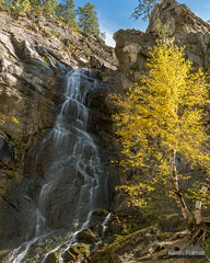 Bridal Veil Foliage (kevin-palmer) Tags: blackhillsnationalforest fall autumn october nikond750 southdakota spearfishcanyon trees foliage color colorful spearfish bridalveilfalls waterfall falls flowing water tamron2470mmf28 polarizer blackhills