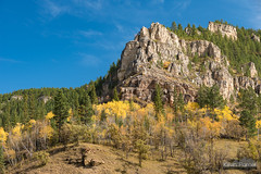 Spearfish Canyon Cliff (kevin-palmer) Tags: blackhillsnationalforest fall autumn october nikond750 southdakota spearfishcanyon trees foliage color colorful savoy tamron2470mmf28 polarizer blackhills