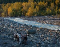 The Nisqually River (Ernie Misner) Tags: river f8andloveyourriver erniemisner nisquallyriver ashfordwa lightroom nik topazstudio pscc 70200efllens hoyahd8polarizer