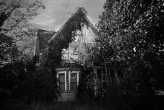BNJ-042-19A (David Swift Photography) Tags: davidswiftphotography newjersey portnorrisnj abandoned abandonedbuildings abandonedhouses ruraldecay 35mm olympusstylusepic ilfordxp2