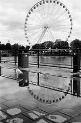 Reflections (shutterlens.ca) Tags: olympus epic stylus 115 35mm film blacknwhite blackwhite blackandwhite reflection montreal