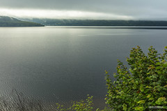 "Tor Point, the village of Dores and Loch Ness under a summer morning's mist. (Scotland by NJC.) Tags: lakes lochs reservoirs waters meres tarns ponds pool lagoon sø meer järvi lac see λίμνη 湖 호수 forest woodland plantation trees grove ""temperate rainforest"" غَابَة floresta 森林 šuma δάσοσ foresta skog las pădure mist haze fog vapour shrouded veiled ضَبَابٌ névoa 薄雾 izmaglica mlha tåge neblina usva brume ""leichter nebel"" καταχνιά foschia もや 안개 tåke mgiełka lochness dores torpoint scotland"
