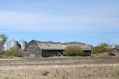 Long Barn (Mick L.) Tags: barn long abandoned ruin relic manitoba
