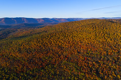 Catskills (Matt Champlin) Tags: ny nys fall foliage amazing autumn beautiful flying flight aerial incredible nature peace peaceful mountains camp hike hiking adventure weekend