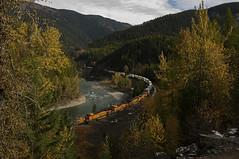 The Last Stand of Fall (Trevor Sokolan) Tags: curve belton hiline trees usa color fall leaves america forest us leaf montana mt ge bnsf generalelectric es44c4 railroad train diesel tracks rail railway trains locomotive z railfan freight trainspotting intermodal railfanning gevo scenic tunnel