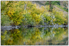 PV0_2293 (PrashantVerma) Tags: california monocounty eastern sierra convict lake 395 autumn fall color reflection canon 5d prashantvermaphotography landscape foliage