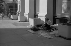 Poverty (Estelle.pv) Tags: absoluteblackandwhite analog aa analogcamera analogfilm analogphotography day blackandwhite brooklyn bw beautiful girl city canon canona1 nyc shadow shadows building ilford outside 35mm 35mmfilm newyork people street streetphoto streetphotography film filmgrain photography line lines look man women ny dog usa poverty