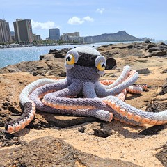 Apollo the Octopus (somethingbyvera) Tags: octopus ocean crochet amigurumi plush toys sea