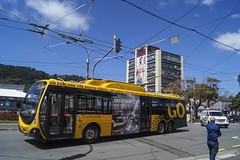 Cambridge Terrace - Wellington (andrewsurgenor) Tags: bus trolleybuses trolleybus trolleycoach trolebús trolejbusowy transit trackless trolleybuswellington trolejbus trolle troleybus filobus obus