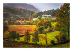 Lakeland Views (Rich Walker Photography) Tags: ambleside cumbria view field autumn autumnal trees houses house wet rain weather canon england efs1585mmisusm eos eos80d lakedistrict