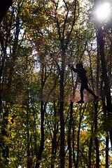Silhouette (Dumby) Tags: landscape ilfov românia silhouette portrait sony nature park trees colors autumn fall