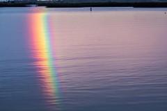 Amazing Fern Ridge Rainbow (dsgetch) Tags: rainbow rainbows reflection water waterreflection lake reservoir fernridgereservoir summerstorms cascadia pnw pacificnorthwest pnwlife pnwwonderland oregon willamettevalley lanecounty