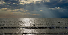 Dark clouds by the sea (dl1ydn) Tags: dl1ydn meer wolken wasser schwimmen water cloud swim carlzeiss planar 50mmf14 manuell manualfocus side turkey cloudy