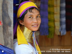 2015-11c Kayan Lahwi Burma 2019 (07) (Matt Hahnewald) Tags: matthahnewaldphotography facingtheworld qualityphoto people head neck face expression lookingcamera smile tribal costume headscarf consensual conceptual travel tourism working beauty exotic ethnic minority local rural traditional touristattraction village panpet kayahstate myanmar burma asia asian person female adult mature woman women nikond610 nikkorafs85mmf18g 85mm 4x3ratio resized 1200x900pixels horizontal street portrait closeup twothirdview indoor sidewaysglance colour posing authentic smiling beautiful sitting giraffewoman brassrings brasscoils kayan lahwi longneck padaung karen weaver homeindustry shop workshop saleswoman halflength