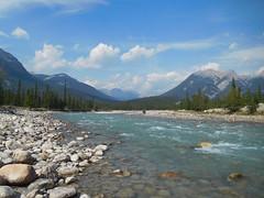 Snaring River Morning Jasper 2017 (matthias416) Tags: yourbestoftoday stream river landscape mountain forest wald flus jasper alberta canada kanada