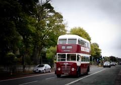Photo of Lothian Buses Centenary Cavalcade