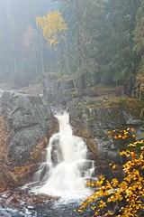 Small Fall (JHaffling) Tags: hagfors sweden brattfallet halgån waterfall vattenfall autumn höst fog dimma moody trees träd rocks stenar canon eosr landscape landskap nature natur