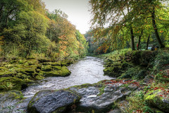 River Wharfe, Strid Woods, Bolton Abbey (v2) (robin denton) Tags: hdr photomatix landscape rnbwharfe riverwharfe riverscape river rocks northyorkshire yorkshire autumnsunlight autumn autumnleaves leaves stridwoods woods boltonabbey yorkshiredalesnationalpark yorkshiredales