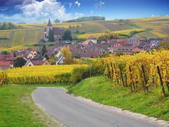 Hunawihr (Haut-Rhin, F) (pietro68bleu) Tags: alsace village chemin vignoble vignes églisefortifiée clocher